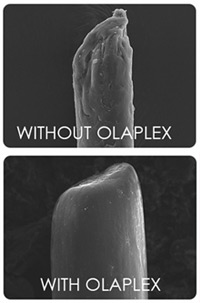 olaplex-with-out